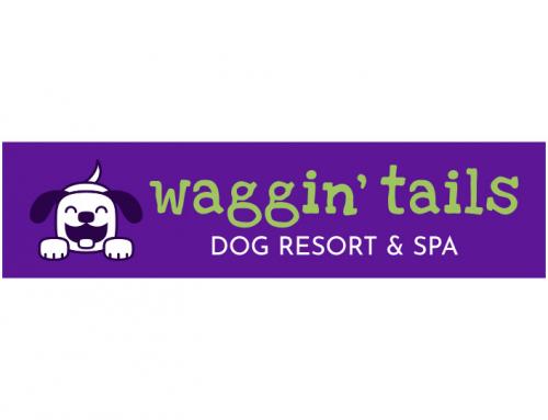 Waggin' Tails Dog Resort